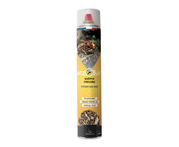 Insectan Wasps and Hornets